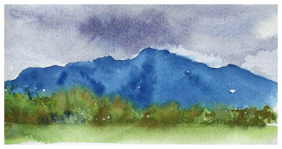 Takaka Hills
